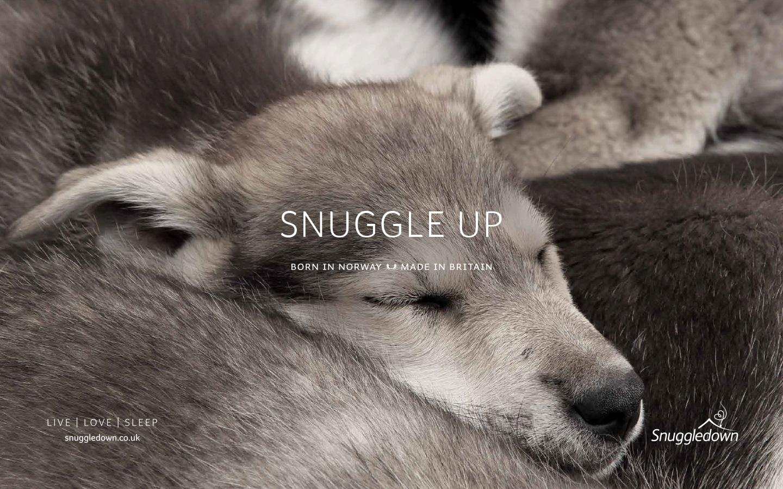 Snuggledown snuggle up