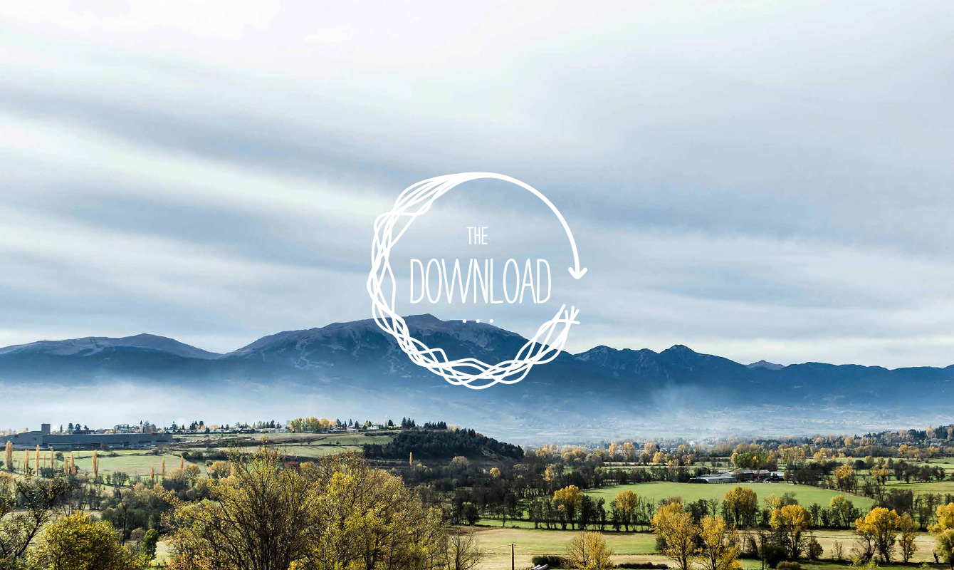 The Download Programme Identity
