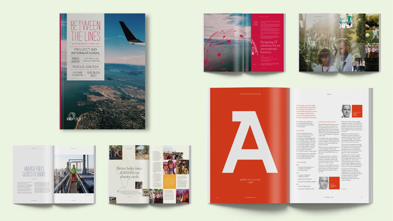 AB Agri internal magazine spreads