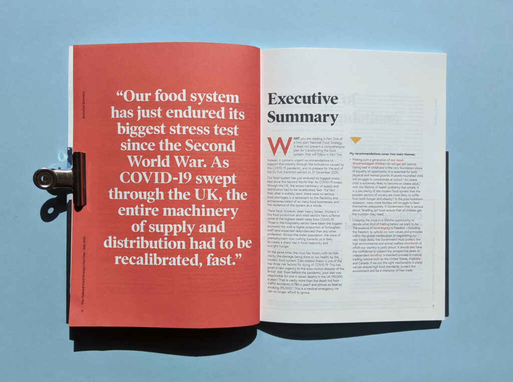 National Food Strategy Report Executive Summary