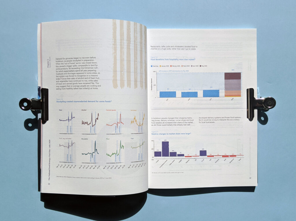 National Food_ Strategy Report Data Visualisation